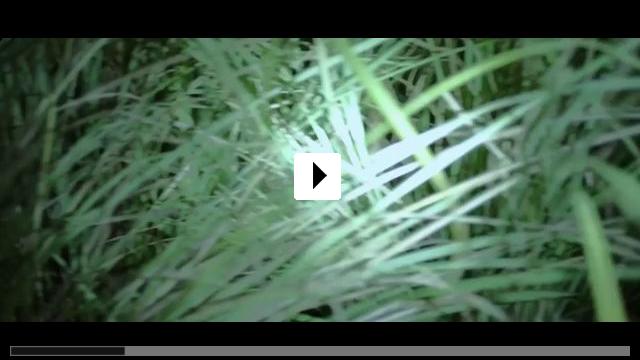 Zum Video: Zorn der Bestien - Jallikattu