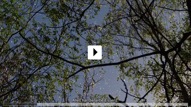 Zum Video: Aware - Reise in das Bewusstsein