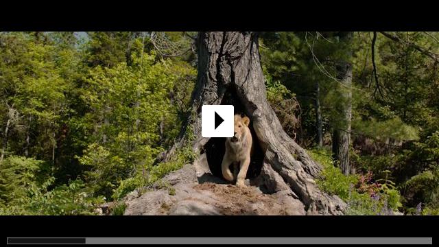 Zum Video: Der Wolf und der Löwe
