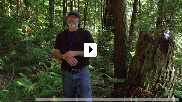 Zum Video: Fantasische Pilze - Die magische Welt zu unseren Füßen