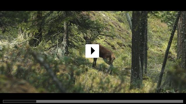 Zum Video: Wild - Jäger und Sammler