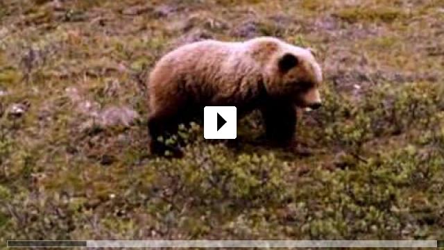 Zum Video: Alaska - Wildnis am Rande der Welt