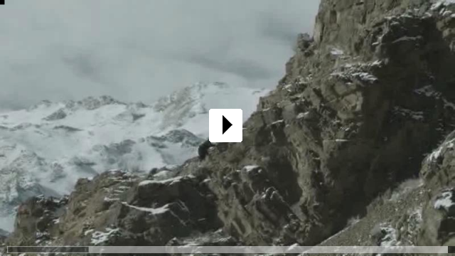 Zum Video: Die Stimme des Adlers