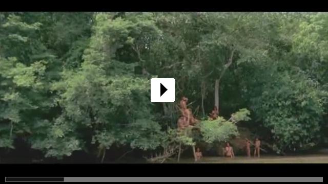 Zum Video: Birdwatchers
