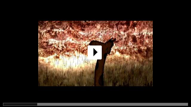 Zum Video: Das Geheimnis der Frösche