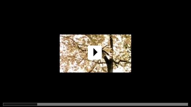 Zum Video: Die Prophezeiung
