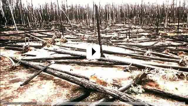 Zum Video: Eine Unbequeme Wahrheit