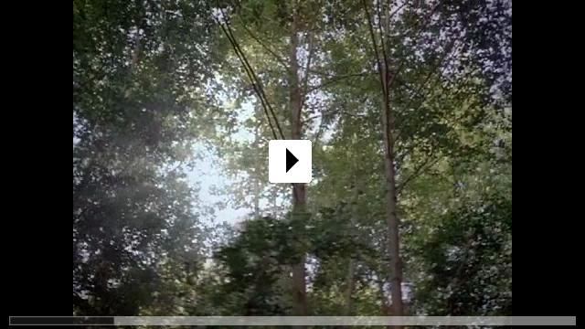 Zum Video: Human Nature - Die Krone der Schöpfung