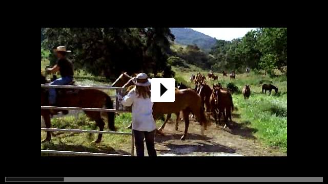 Zum Video: Flicka - Freiheit. Freundschaft. Abenteuer