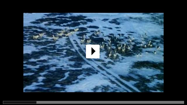Zum Video: The Sea