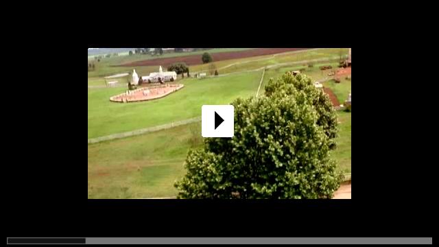 Zum Video: Im Rennstall ist das Zebra los!