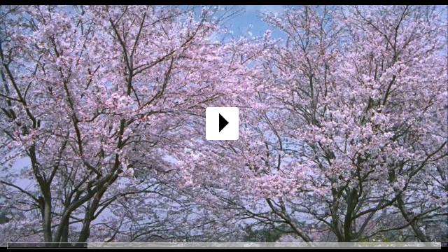 Zum Video: Hana-Bi - Feuerblume