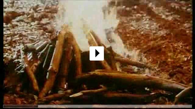 Zum Video: Die neuen Abenteuer von Pinocchio