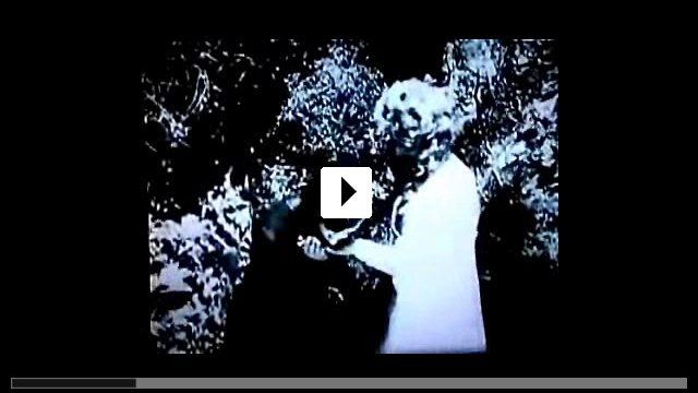 Zum Video: Katzenball