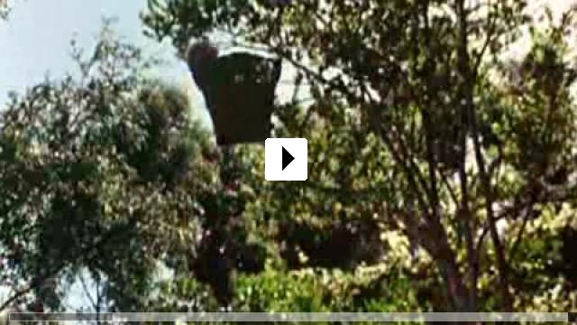 Zum Video: Napoleon - Abenteuer auf vier Pfoten