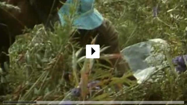 Zum Video: Das Wissen vom Heilen