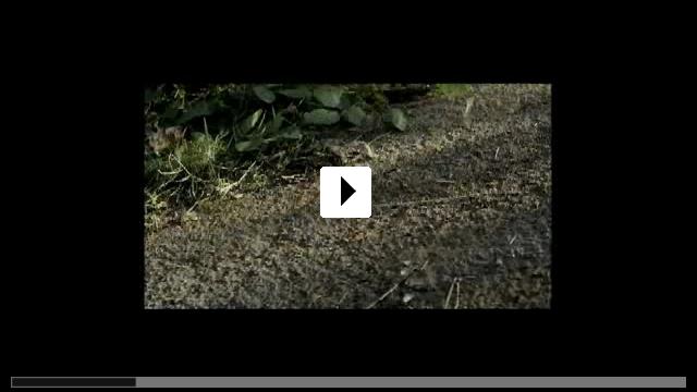 Zum Video: Der Schatz der weißen Falken