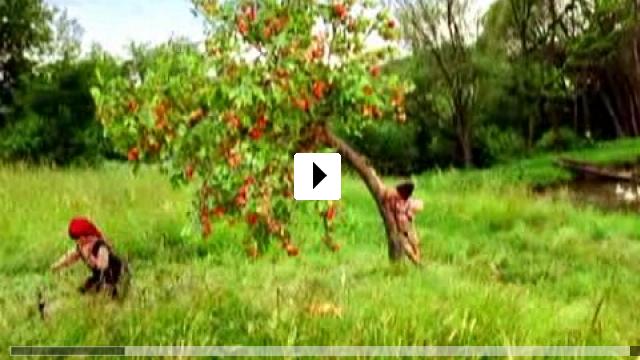 Zum Video: Der Räuber Hotzenplotz