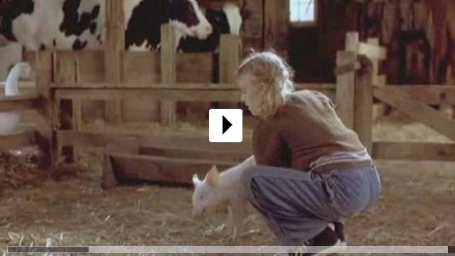 Zum Video: Schweinchen Wilbur und seine Freunde