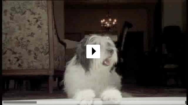 Zum Video: Gordos Reise ans Ende der Welt
