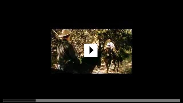 Zum Video: All die schönen Pferde