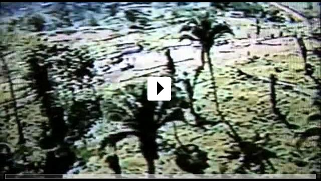 Zum Video: Auf halbem Weg zum Himmel