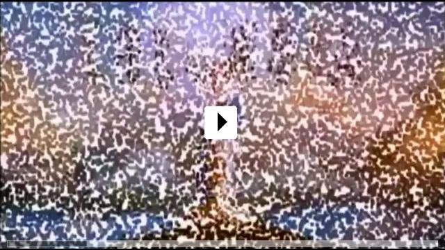 Zum Video: Das Netz