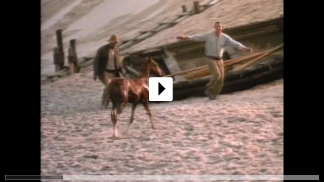 Zum Video: Lucky's großes Abenteuer