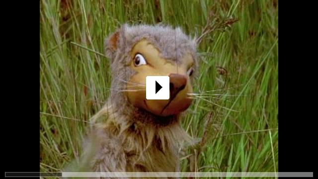 Zum Video: Story von Monty Spinnenratz