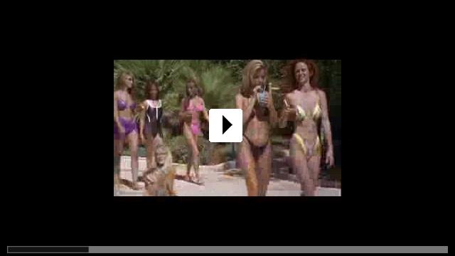 Zum Video: Viva Las Vegas
