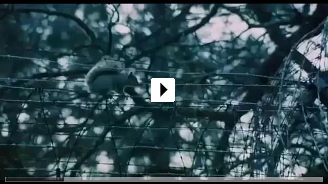 Zum Video: Einer flog über das Kuckucksnest