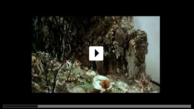 Zum Video: Aguirre, der Zorn Gottes