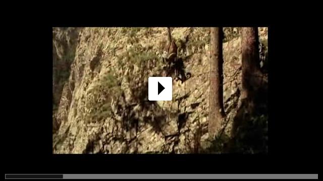 Zum Video: Der Förster vom Silberwald