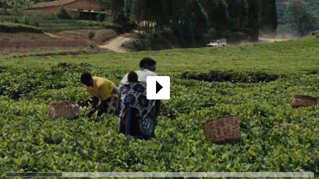 Zum Video: Shake Hands with the Devil