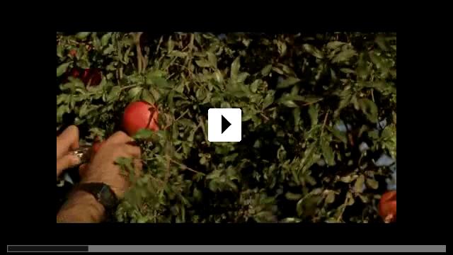 Zum Video: Süt