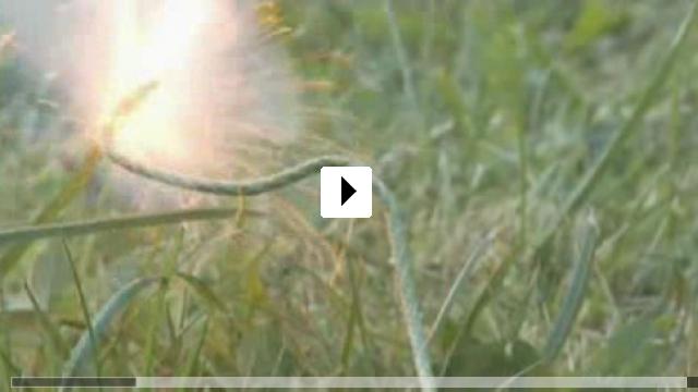 Zum Video: Zwerge sprengen