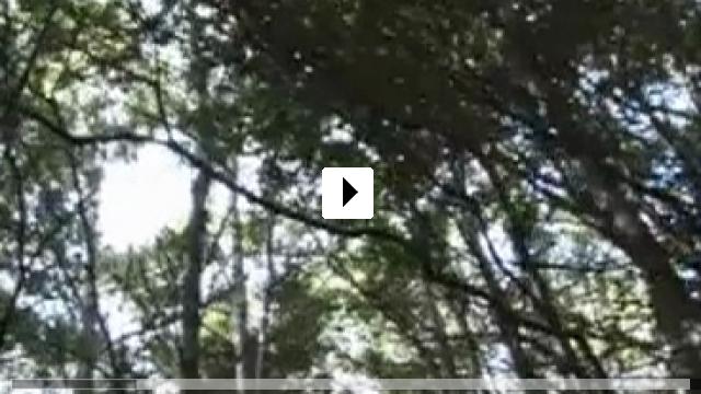 Zum Video: This Way of Life