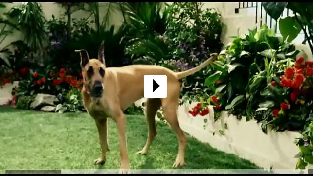 Zum Video: Marmaduke