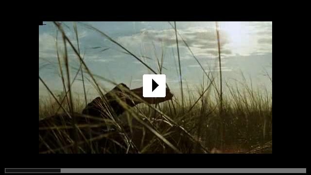 Zum Video: Das Lied von den zwei Pferden