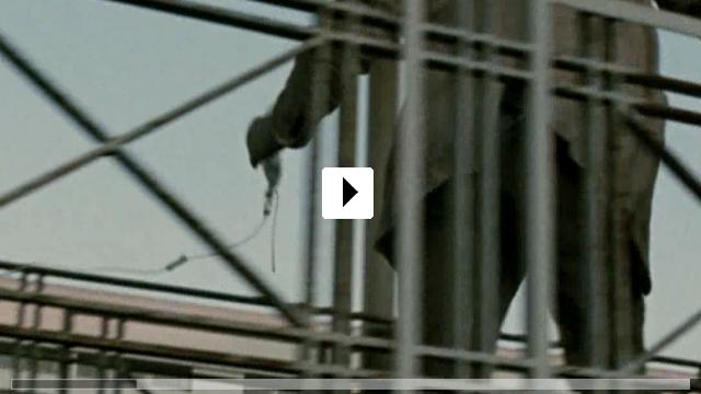 Zum Video: Waffenstillstand
