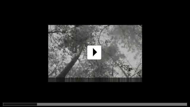 Zum Video: Bats 2: Blutige Ernte