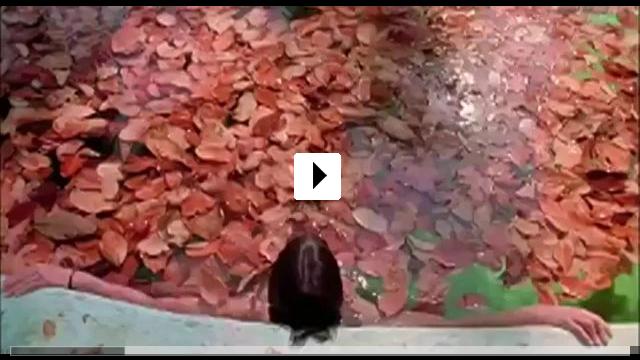Zum Video: Y tu mamá también- Lust for Life