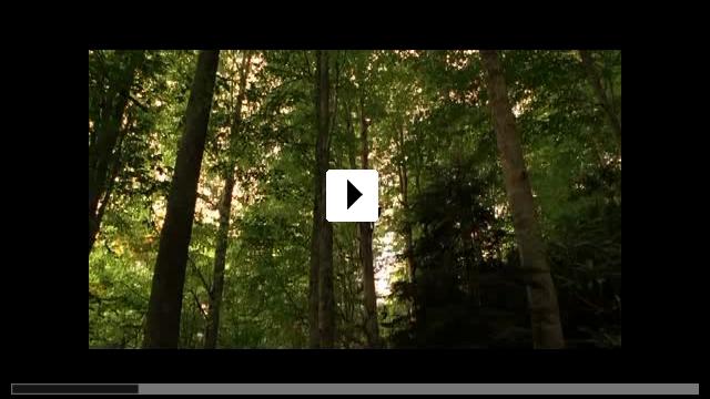 Zum Video: Bal