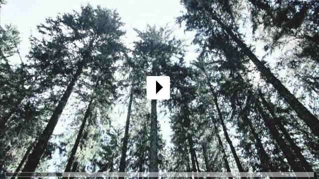 Zum Video: Black Forest