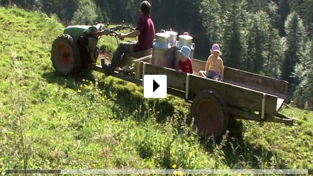 Zum Video: De Chatzelochsenn