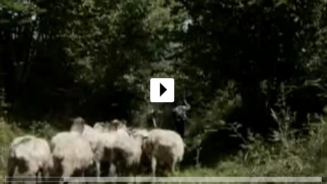 Zum Video: Ander
