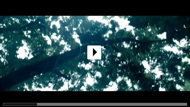 Zum Video: Predators
