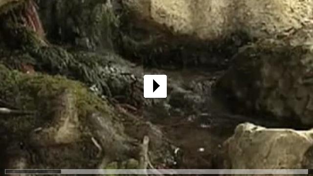 Zum Video: Water makes Money