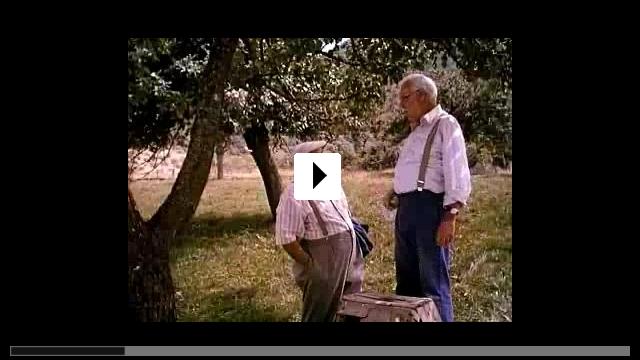 Zum Video: Eine Schwalbe macht den Sommer