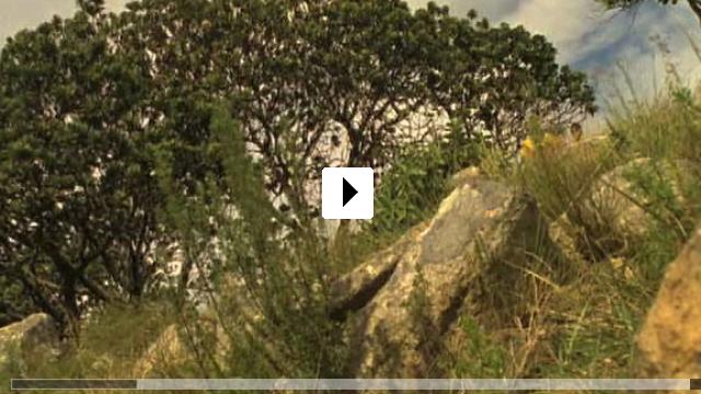 Zum Video: Themba